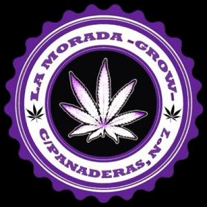la morada grow shop palencia