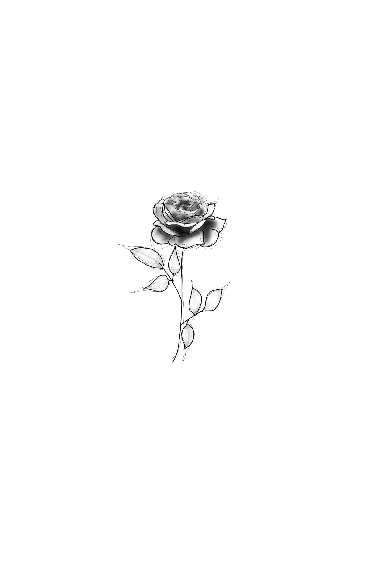 rosa tatuaje sexy temporal